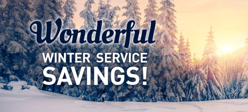 Wonderful Winter service savings
