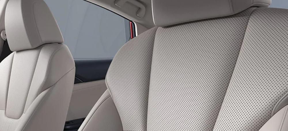 insight Seat Texture