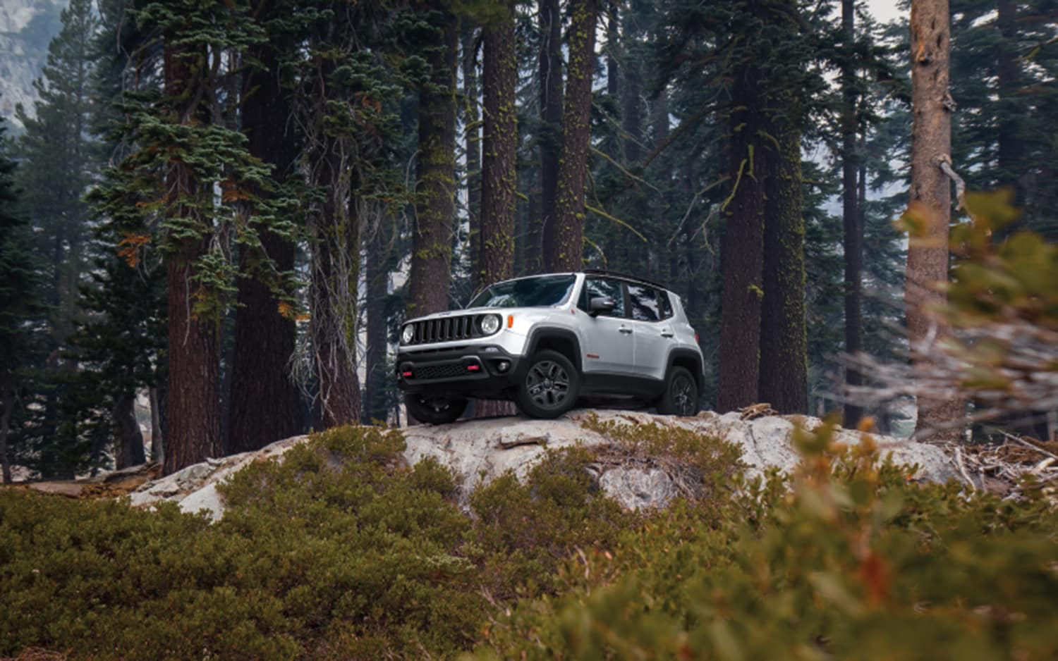Compare the 2021 Jeep Renegade and the 2021 Chevrolet Trailblazer at Carolina CDJR in Elizabeth City, NC | 2021 Jeep Renegade parked on rocks in the woods