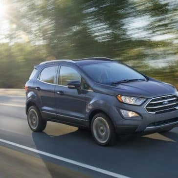 2019 Ford EcoSport Driving