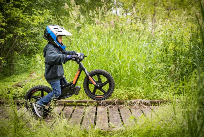 Harley IRON E Electric Motorcycle for Kids