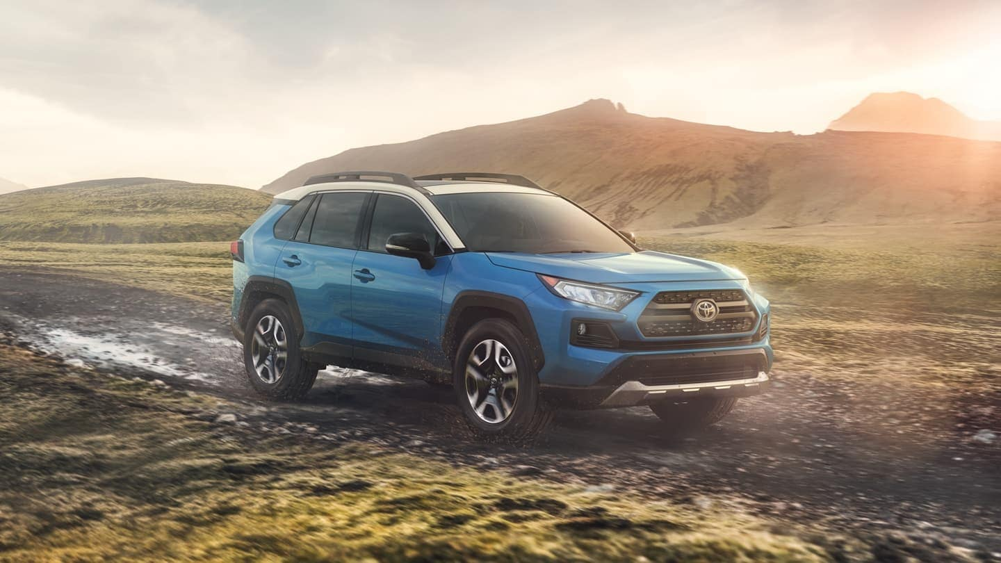2019 Toyota RAV4 in blue on unpaved path
