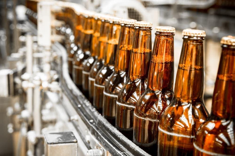 Beer bottles on conveyor