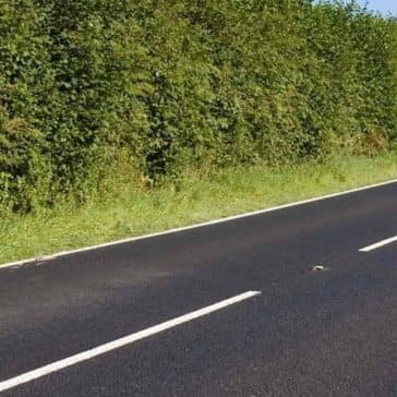 Pleasant-Road-Background