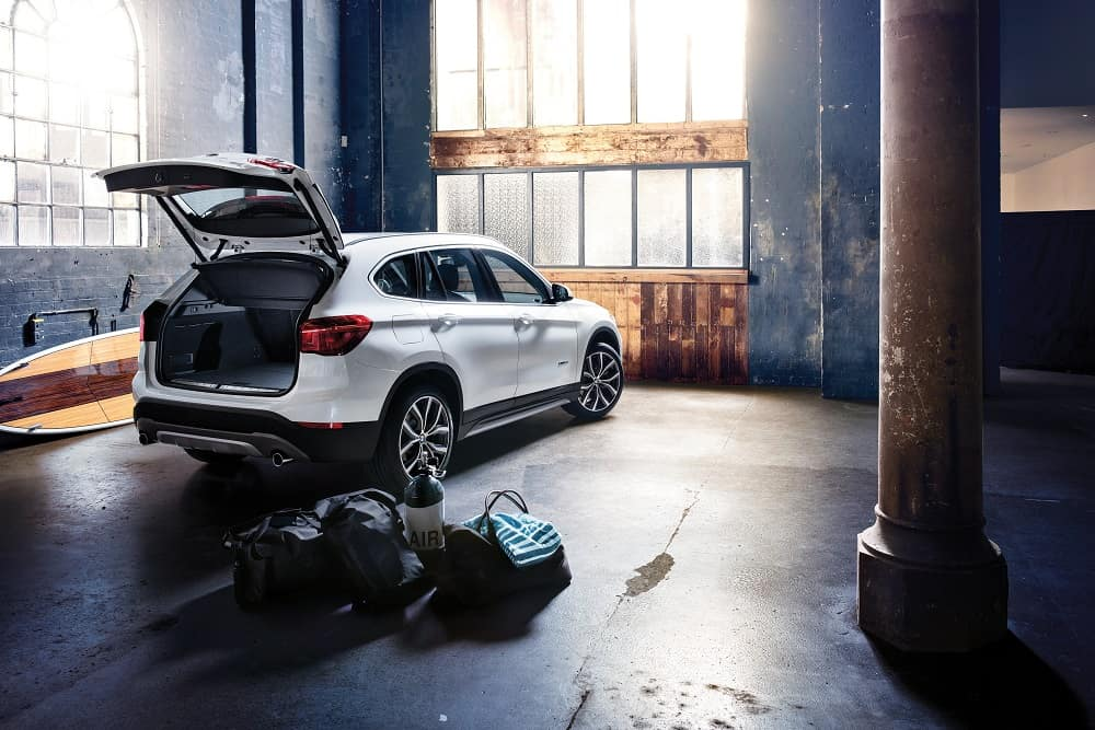 2018 BMW X1 Cargo