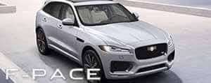fpace icon