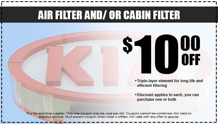 Air and/ or Cabin Filter Special