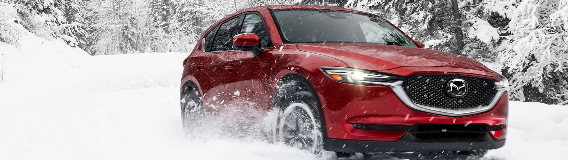 Winter Drive Sales Event