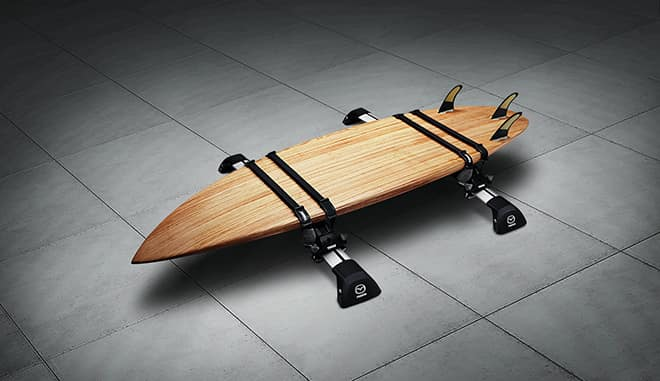 STAND_UP_BOARD_CARRIER