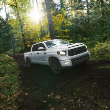 Toyota_Tundra_Driving_In_The_Woods